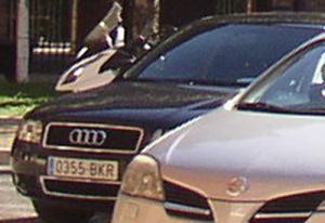 0355-BKR