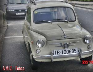 IB-100685