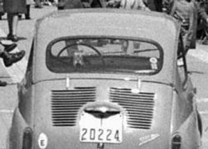T-20224
